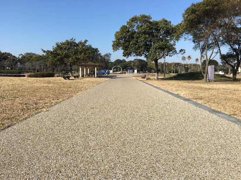 海の中道海浜公園(大芝生広場)